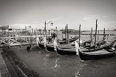 pic of gondola  - Venice Italy gondolas  - JPG