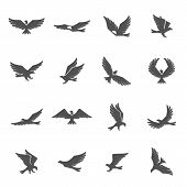 stock photo of spread wings  - Different eagle birds spreding their wings and flying icons set isolated vector illustration - JPG
