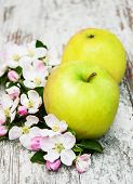 image of apple blossom  - apples and apple tree blossoms on a old wooden table - JPG