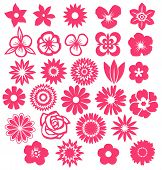 stock photo of organist  - Graphic silhouette flowers icons collection - JPG