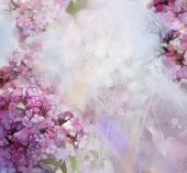 image of apricot  - Abstract watercolor painting pink Apricot tree flower in soft colorful and blur style with bokehSpring floral seasonal nature on grunge paper background - JPG