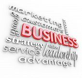 The word Business surrounded by management and organization concepts such as leadership, marketing,