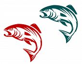 picture of trout fishing  - Salmon fish in two variations for fishing sports mascot - JPG