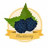 Ripe Blackberries With Name Vector Illustration. Organic Jam Tag. Eco Juice Circle Sticker. Berry Fl poster