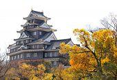 Okayama castle (Ravens Castle, Black castle), Okayama city, Japan poster