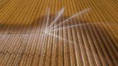 Aerial View Crop Irrigation Machine Using Center Pivot Sprinkler System. An Irrigation Pivot Waterin poster