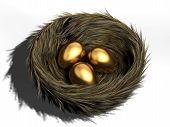 picture of bird-nest  - Three golden eggs in a bird nest  - JPG