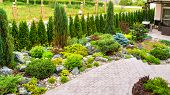 Landscaping Panorama Of Home Garden. Beautiful View Of Landscaped Garden In Backyard. Scenery Of Nat poster