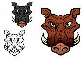 stock photo of wild hog  - Wild boar or hog in cartoon style for sports team mascot - JPG
