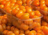 Постер, плакат: Оранжевый цвет помидоры Черри на продажу