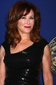 LOS ANGELES - FEB 10: Mary McDonnell in der 2013 American Society of Cinematographers Award bei der