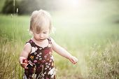 picture of strawberry blonde  - 2 year old girl outside in the summer time eating wild strawberries threaded on a grass stalk - JPG