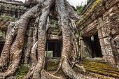 Travel Cambodia concept background - ancient stone door and tree roots, Ta Prohm temple ruins, Angko