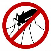 pic of gnats  - No mosquito sign - JPG
