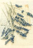 stock photo of nostalgic  - dried lavender flowers and old love letters - JPG