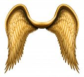 image of cherubim  - Digital illustration of angel wings - JPG