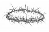 foto of crown-of-thorns  - Illustration of a crown of thorns like the one placed on Jesus Christ - JPG