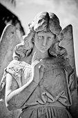 image of deceased  - A weeping angel statue looks down at the deceased - JPG