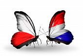 pic of holland flag  - Two butterflies with flags on wings as symbol of relations Poland and Holland - JPG