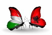 stock photo of albania  - Two butterflies with flags on wings as symbol of relations Hungary and Albania - JPG