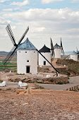pic of windmills  - Traditional white windmills in Consuegra - JPG