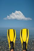 foto of fin  - Looking at a blue sea past a pair of yellow fins - JPG