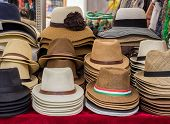 stock photo of panama hat  - Hats on display on market stall - JPG