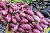 picture of aubergines  - Bunch of Aubergines Eggplants at Farmers Market - JPG