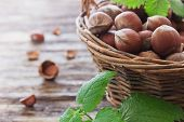 picture of cobnuts  - hazelnuts in a basket on an old wooden background - JPG