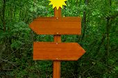 foto of directional  - Direction sign in the woods - JPG