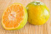 image of honeysuckle  - Fresh of an orange honeysuckle stock photo - JPG