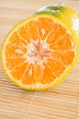picture of honeysuckle  - Fresh of an orange honeysuckle stock photo - JPG