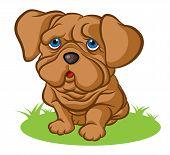 stock photo of puppy eyes  - Illustration of sad little puppy with sad blue eyes - JPG
