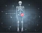 foto of skeleton  - Human skeleton with hip pain on a dark technology background - JPG