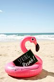 a signboard with the text spring break written in it and a swim ring in the shape of a pink flamingo poster