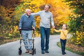 Elderly Father Adult Son And Grandson Out For A Walk In The Park. poster