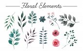 Set Of Flowers Painted In Watercolor On White Paper. Sketch Of Flowers And Herbs. Wreath, Garland Of poster