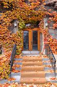 picture of paladin  - Colorful doorway in fall time Montreal - JPG
