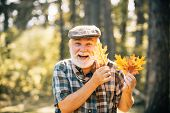 Healthy Active Senior Man Holding A. Portrait Of A Senior Autumn Man Outdoors. Elderly Man Smiling O poster