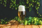 Beer And Hop Plant. Still Life With Beer And Hop Plant In Retro Style. Glass Of Cold Foamy Beer And  poster