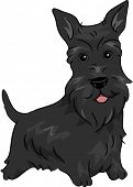 pic of scottish terrier  - Illustration Featuring a Scottish Terrier - JPG