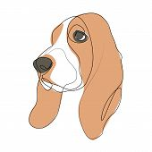 Continuous Line Basset Hound. Single Line Minimal Style Dog Vector Illustration poster