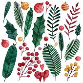 Set Of Watercolor Hand Drawn Christmas Elements For Making A Wreath. Christmas Tree Branches, Holly  poster