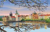 Colorful Vector Hand Drawing Illustration Of Prague Old City Panorama With Blossom Tree, River Vltav poster