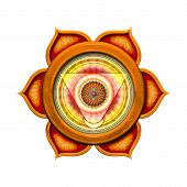 The Second Chakra isolated