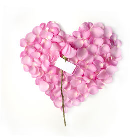 stock photo of heart shape  - Flower petals in heart shape with pink rose and blank card  - JPG