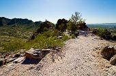 foto of piestewa  - Dirt Path Curving to the Right on Piestewa  - JPG