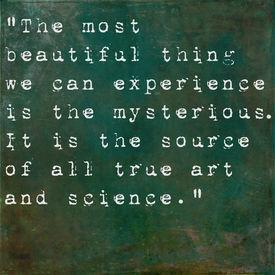 image of einstein  - Inspirational quote by Albert Einstein on earthy green background - JPG