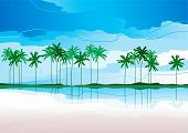 tropical coast