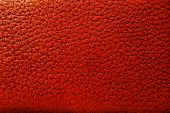 pic of crocodilian  - Background of Brown leather texture - JPG